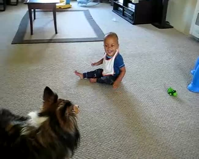Dog Makes Baby Laugh