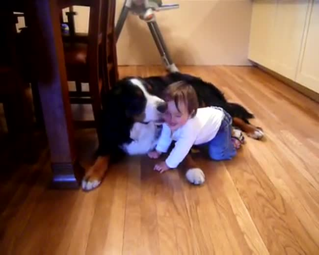 Dog loves baby and baby loves dog