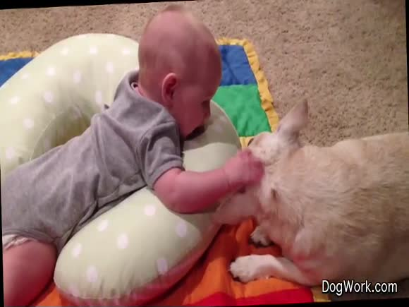 A Dog and Baby Bond