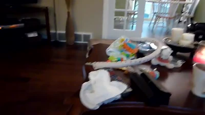Corgi dog wants baby to play fetch