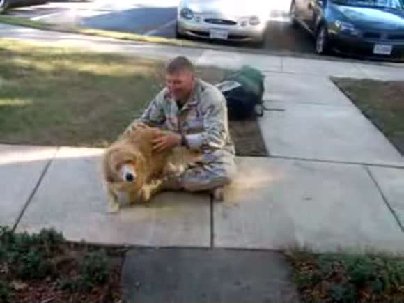 Doggy gets emotional welcoming his soldier dad