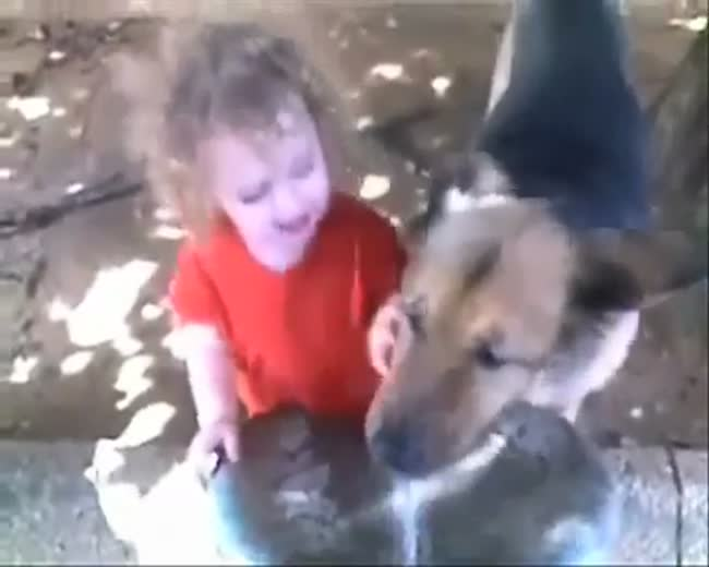 A Dog a Kid and a Water Fountain