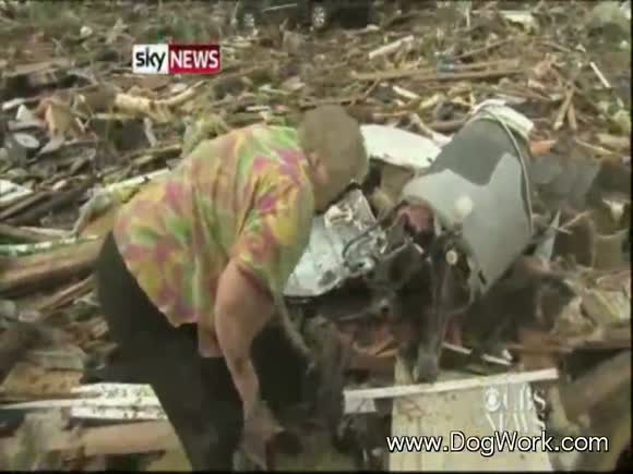 The Oklahoma Tornado Miracle Dog