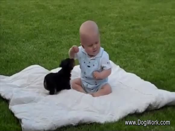 A Puppy and Baby Play... The Dog Wins